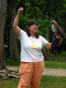 Rebecca Lesko with a red tailed hawk on her glove in the yard at the Endless Mountains Nature Center